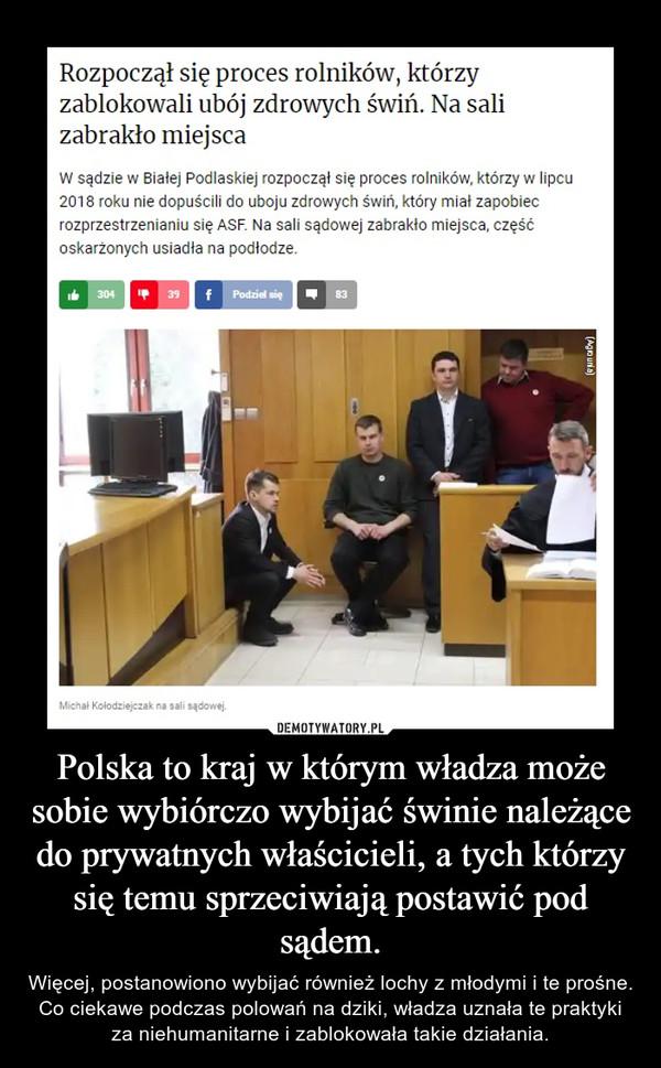 Polska to kraj w którym władza może sobie wybiórczo wybijać świnie należące do prywatnych właścicieli, a tych którzy się temu sprzeciwiają postawić pod sądem. – Więcej, postanowiono wybijać również lochy z młodymi i te prośne. Co ciekawe podczas polowań na dziki, władza uznała te praktyki za niehumanitarne i zablokowała takie działania.