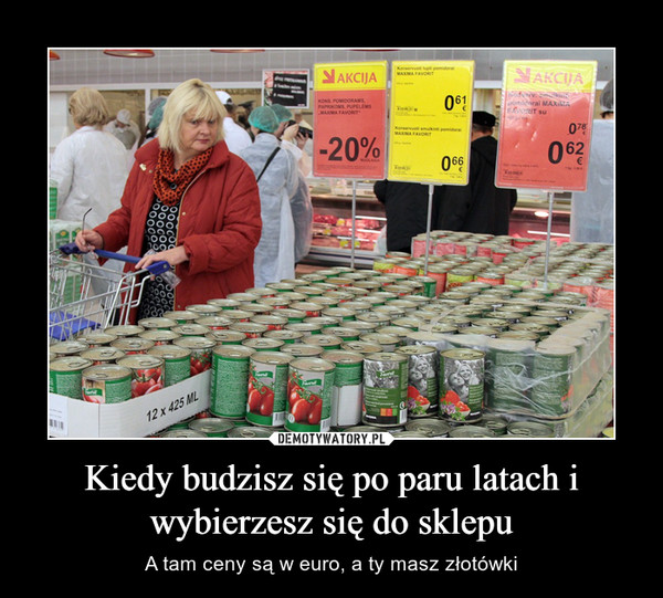 Kiedy budzisz się po paru latach i wybierzesz się do sklepu – A tam ceny są w euro, a ty masz złotówki