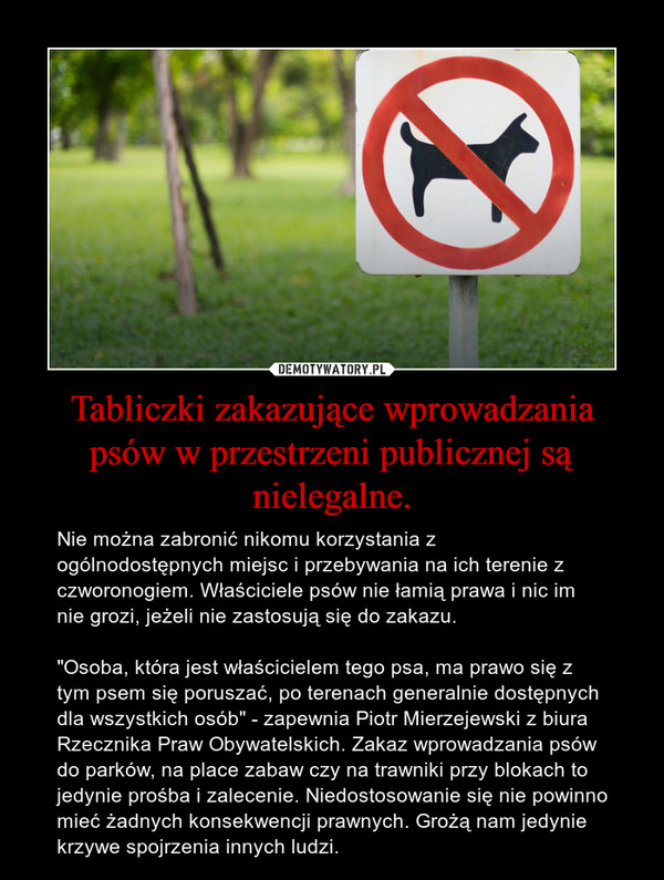 """Tabliczki zakazujące wprowadzania psów w przestrzeni publicznej są nielegalne. – Nie można zabronić nikomu korzystania z ogólnodostępnych miejsc i przebywania na ich terenie z czworonogiem. Właściciele psów nie łamią prawa i nic im nie grozi, jeżeli nie zastosują się do zakazu.""""Osoba, która jest właścicielem tego psa, ma prawo się z tym psem się poruszać, po terenach generalnie dostępnych dla wszystkich osób"""" - zapewnia Piotr Mierzejewski z biura Rzecznika Praw Obywatelskich. Zakaz wprowadzania psów do parków, na place zabaw czy na trawniki przy blokach to jedynie prośba i zalecenie. Niedostosowanie się nie powinno mieć żadnych konsekwencji prawnych. Grożą nam jedynie krzywe spojrzenia innych ludzi."""