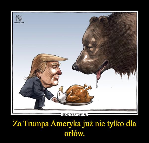 Za Trumpa Ameryka już nie tylko dla orłów. –