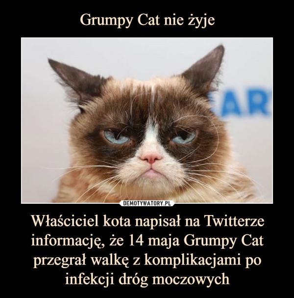 Właściciel kota napisał na Twitterze informację, że 14 maja Grumpy Cat przegrał walkę z komplikacjami po infekcji dróg moczowych –