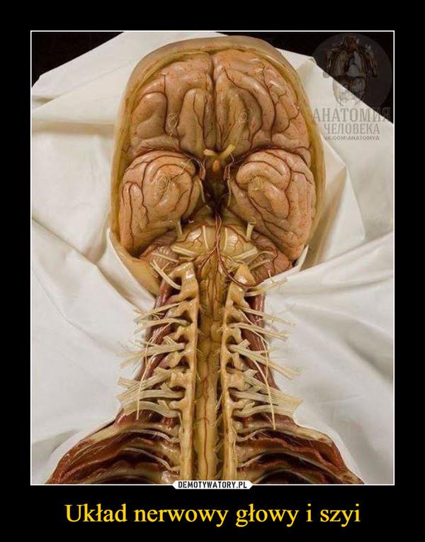 Układ nerwowy głowy i szyi –