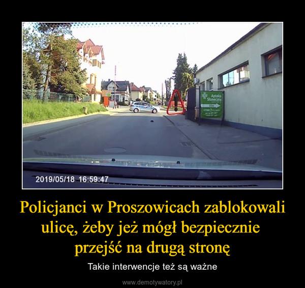 Policjanci w Proszowicach zablokowali ulicę, żeby jeż mógł bezpiecznie przejść na drugą stronę – Takie interwencje też są ważne