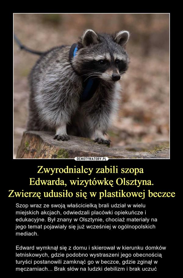 Zwyrodnialcy zabili szopa Edwarda, wizytówkę Olsztyna.Zwierzę udusiło się w plastikowej beczce – Szop wraz ze swoją właścicielką brali udział w wielu miejskich akcjach, odwiedzali placówki opiekuńcze i edukacyjne. Był znany w Olsztynie, chociaż materiały na jego temat pojawiały się już wcześniej w ogólnopolskich mediach. Edward wymknął się z domu i skierował w kierunku domków letniskowych, gdzie podobno wystraszeni jego obecnością turyści postanowili zamknąć go w beczce, gdzie zginął w męczarniach... Brak słów na ludzki debilizm i brak uczuć