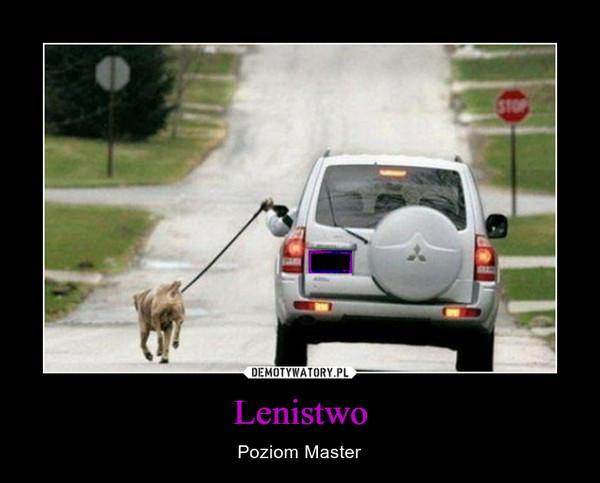 Lenistwo – Poziom Master