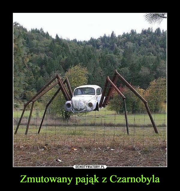 Zmutowany pająk z Czarnobyla –