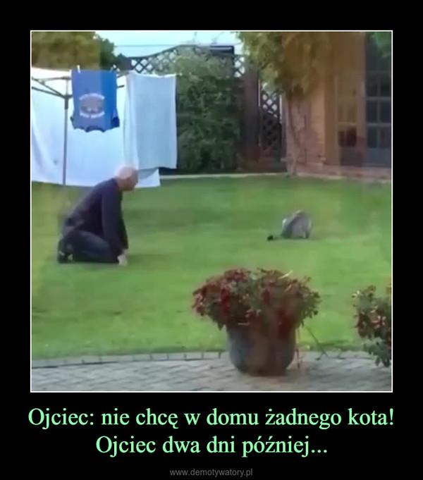 Ojciec: nie chcę w domu żadnego kota!Ojciec dwa dni później... –