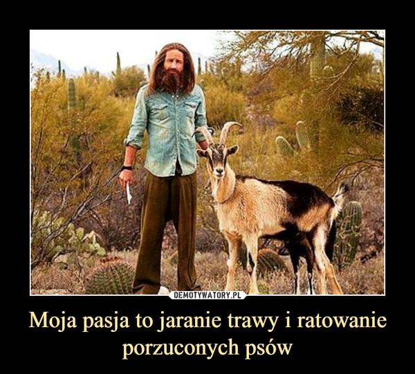 Moja pasja to jaranie trawy i ratowanie porzuconych psów –