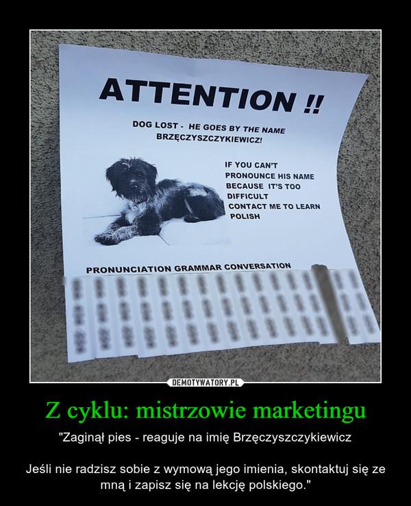 """Z cyklu: mistrzowie marketingu – """"Zaginął pies - reaguje na imię BrzęczyszczykiewiczJeśli nie radzisz sobie z wymową jego imienia, skontaktuj się ze mną i zapisz się na lekcję polskiego."""""""