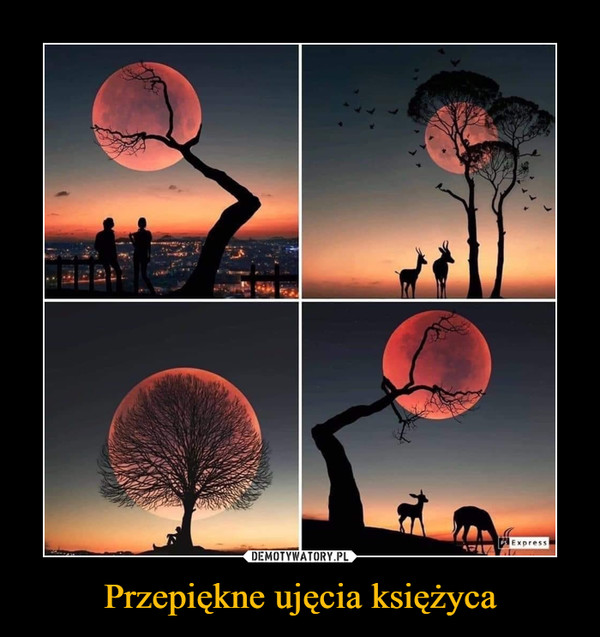 Przepiękne ujęcia księżyca –