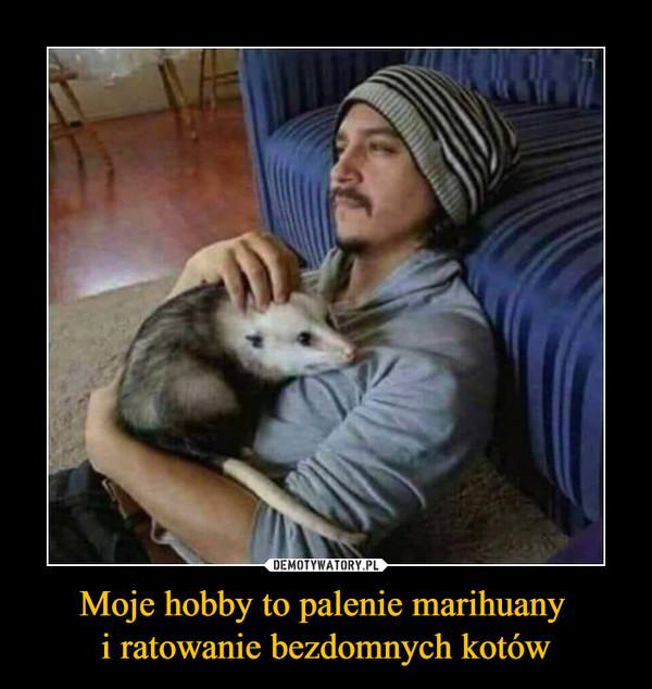 Moje hobby to palenie marihuany i ratowanie bezdomnych kotów –