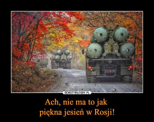 Ach, nie ma to jak  piękna jesień w Rosji!