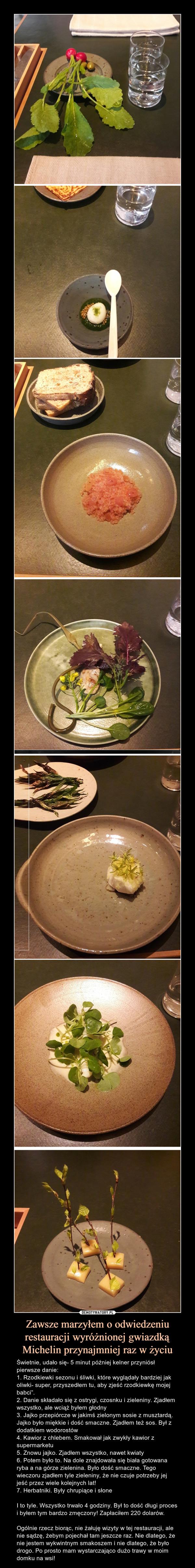 """Zawsze marzyłem o odwiedzeniu restauracji wyróżnionej gwiazdką Michelin przynajmniej raz w życiu – Świetnie, udało się- 5 minut później kelner przyniósł pierwsze danie:1. Rzodkiewki sezonu i śliwki, które wyglądały bardziej jak oliwki- super, przyszedłem tu, aby zjeść rzodkiewkę mojej babci"""".2. Danie składało się z ostrygi, czosnku i zieleniny. Zjadłem wszystko, ale wciąż byłem głodny3. Jajko przepiórcze w jakimś zielonym sosie z musztardą. Jajko było miękkie i dość smaczne. Zjadłem też sos. Był z dodatkiem wodorostów4. Kawior z chlebem. Smakował jak zwykły kawior z supermarketu5. Znowu jajko. Zjadłem wszystko, nawet kwiaty6. Potem było to. Na dole znajdowała się biała gotowana ryba a na górze zielenina. Było dość smaczne. Tego wieczoru zjadłem tyle zieleniny, że nie czuje potrzeby jej jeść przez wiele kolejnych lat! 7. Herbatniki. Były chrupiące i słoneI to tyle. Wszystko trwało 4 godziny. Był to dość długi proces i byłem tym bardzo zmęczony! Zapłaciłem 220 dolarów.Ogólnie rzecz biorąc, nie żałuję wizyty w tej restauracji, ale nie sądzę, żebym pojechał tam jeszcze raz. Nie dlatego, że nie jestem wykwintnym smakoszem i nie dlatego, że było drogo. Po prosto mam wystarczająco dużo trawy w moim domku na wsi!"""