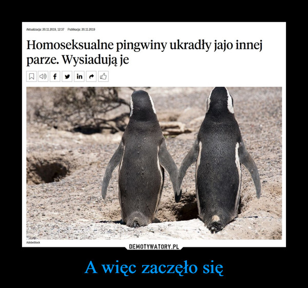 A więc zaczęło się –  Aktualizacja: 20.11.2019, 12:37 Publikacja: 20.11.2019 Homoseksualne pingwiny ukradły jajo innej parze. Wysiadują je