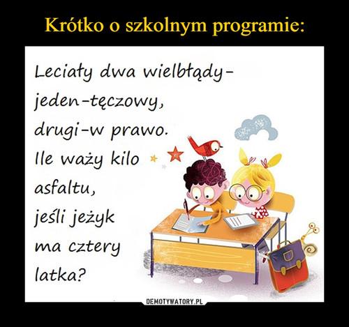Krótko o szkolnym programie: