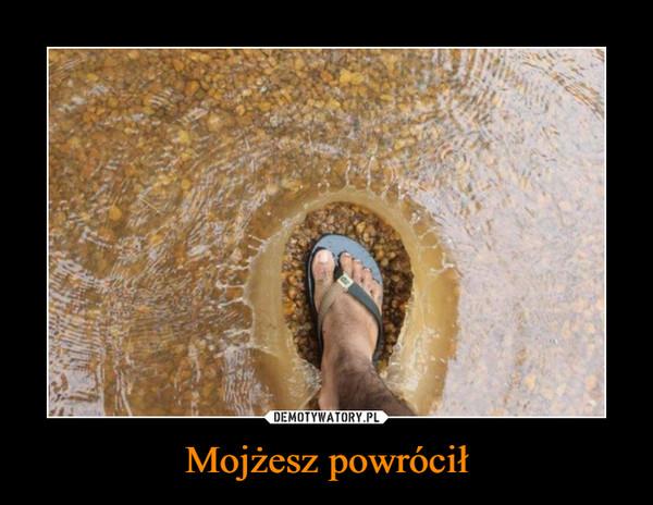 Mojżesz powrócił –