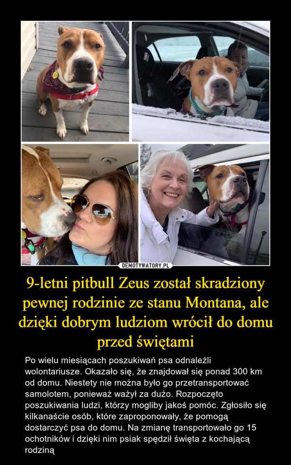 9-letni pitbull Zeus został skradziony pewnej rodzinie ze stanu Montana, ale dzięki dobrym ludziom wrócił do domu przed świętami – Po wielu miesiącach poszukiwań psa odnaleźli wolontariusze. Okazało się, że znajdował się ponad 300 km od domu. Niestety nie można było go przetransportować samolotem, ponieważ ważył za dużo. Rozpoczęto poszukiwania ludzi, którzy mogliby jakoś pomóc. Zgłosiło się kilkanaście osób, które zaproponowały, że pomogą dostarczyć psa do domu. Na zmianę transportowało go 15 ochotników i dzięki nim psiak spędził święta z kochającą rodziną