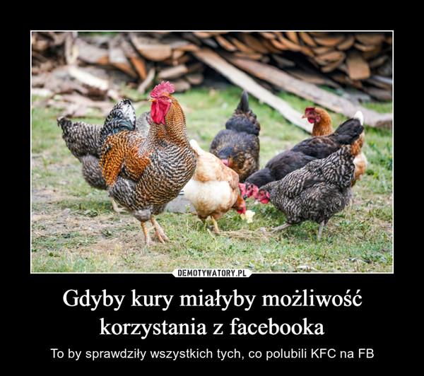 Gdyby kury miałyby możliwość korzystania z facebooka – To by sprawdziły wszystkich tych, co polubili KFC na FB