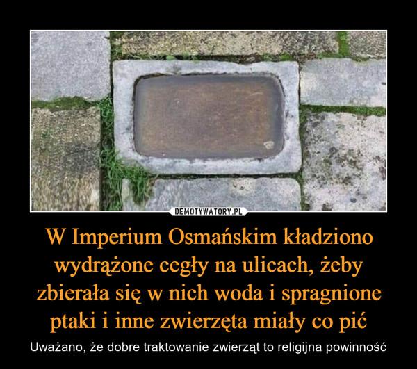 W Imperium Osmańskim kładziono wydrążone cegły na ulicach, żeby zbierała się w nich woda i spragnione ptaki i inne zwierzęta miały co pić – Uważano, że dobre traktowanie zwierząt to religijna powinność