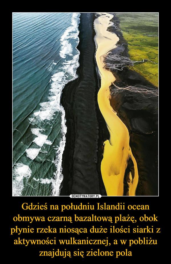 Gdzieś na południu Islandii ocean obmywa czarną bazaltową plażę, obok płynie rzeka niosąca duże ilości siarki z aktywności wulkanicznej, a w pobliżu znajdują się zielone pola –