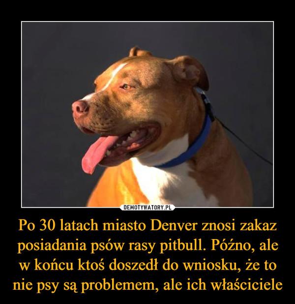 Po 30 latach miasto Denver znosi zakaz posiadania psów rasy pitbull. Późno, ale w końcu ktoś doszedł do wniosku, że to nie psy są problemem, ale ich właściciele –