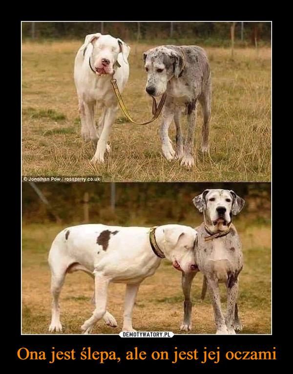 Ona jest ślepa, ale on jest jej oczami –