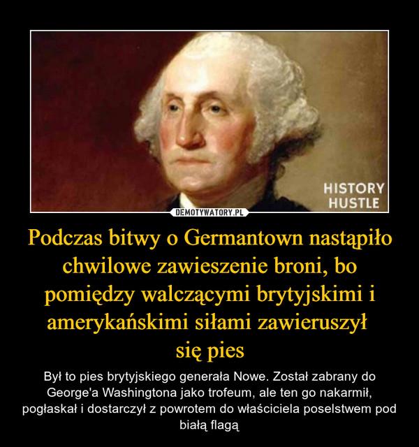 Podczas bitwy o Germantown nastąpiło chwilowe zawieszenie broni, bo pomiędzy walczącymi brytyjskimi i amerykańskimi siłami zawieruszył się pies – Był to pies brytyjskiego generała Nowe. Został zabrany do George'a Washingtona jako trofeum, ale ten go nakarmił, pogłaskał i dostarczył z powrotem do właściciela poselstwem pod białą flagą