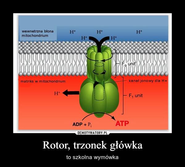 Rotor, trzonek główka – to szkolna wymówka