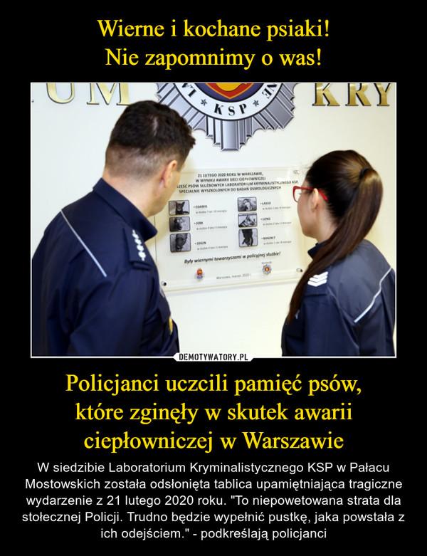 """Policjanci uczcili pamięć psów,które zginęły w skutek awariiciepłowniczej w Warszawie – W siedzibie Laboratorium Kryminalistycznego KSP w Pałacu Mostowskich została odsłonięta tablica upamiętniająca tragiczne wydarzenie z 21 lutego 2020 roku. """"To niepowetowana strata dla stołecznej Policji. Trudno będzie wypełnić pustkę, jaka powstała z ich odejściem."""" - podkreślają policjanci"""
