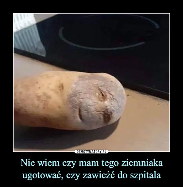Nie wiem czy mam tego ziemniaka ugotować, czy zawieźć do szpitala –