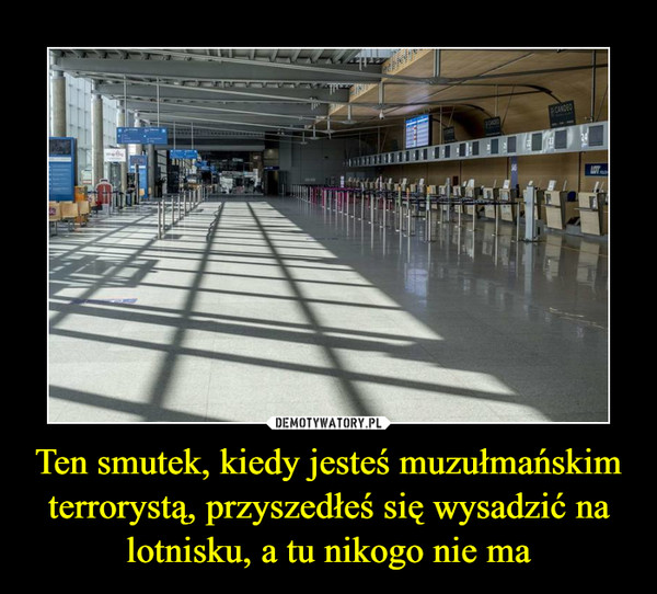 Ten smutek, kiedy jesteś muzułmańskim terrorystą, przyszedłeś się wysadzić na lotnisku, a tu nikogo nie ma –