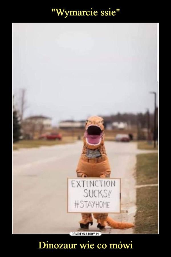 Dinozaur wie co mówi –