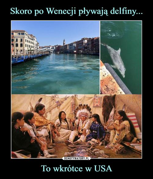Skoro po Wenecji pływają delfiny... To wkrótce w USA