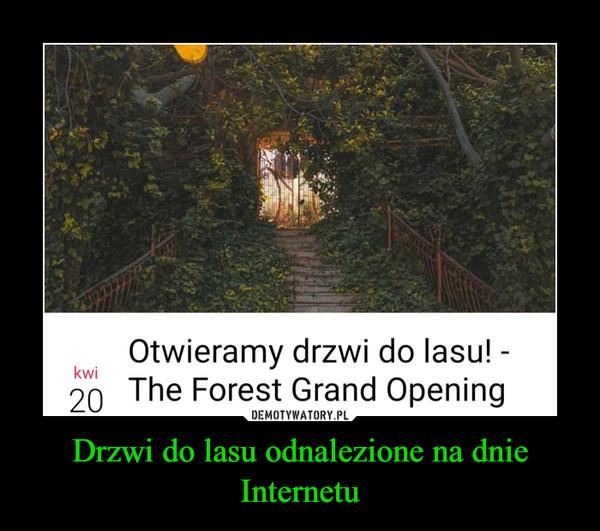 Drzwi do lasu odnalezione na dnie Internetu –