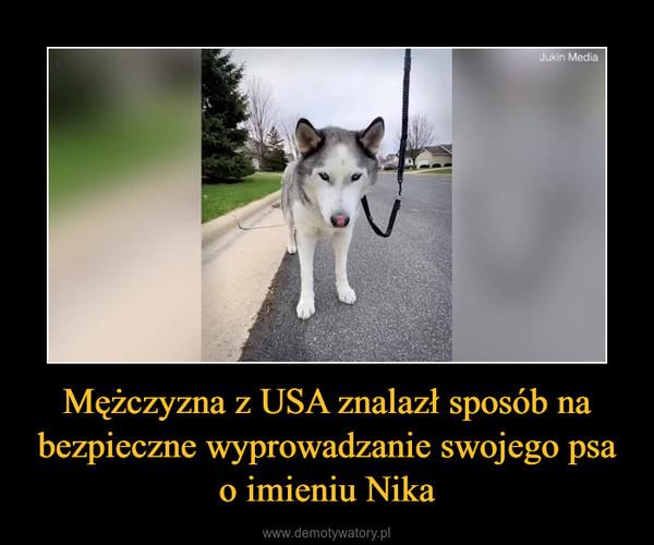 Mężczyzna z USA znalazł sposób na bezpieczne wyprowadzanie swojego psa o imieniu Nika –