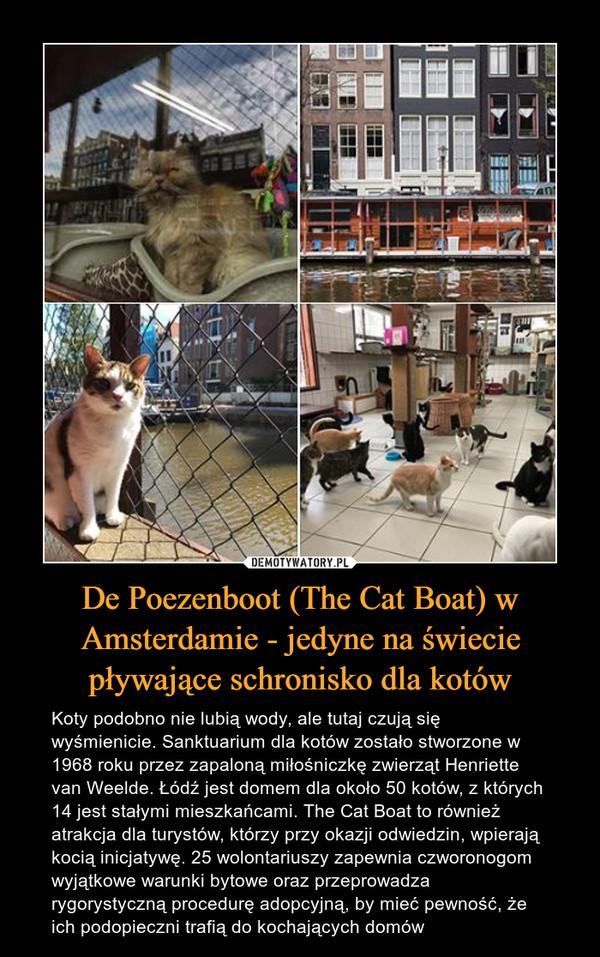 De Poezenboot (The Cat Boat) w Amsterdamie - jedyne na świecie pływające schronisko dla kotów – Koty podobno nie lubią wody, ale tutaj czują się wyśmienicie. Sanktuarium dla kotów zostało stworzone w 1968 roku przez zapaloną miłośniczkę zwierząt Henriette van Weelde. Łódź jest domem dla około 50 kotów, z których 14 jest stałymi mieszkańcami. The Cat Boat to również atrakcja dla turystów, którzy przy okazji odwiedzin, wpierają kocią inicjatywę. 25 wolontariuszy zapewnia czworonogom wyjątkowe warunki bytowe oraz przeprowadza rygorystyczną procedurę adopcyjną, by mieć pewność, że ich podopieczni trafią do kochających domów