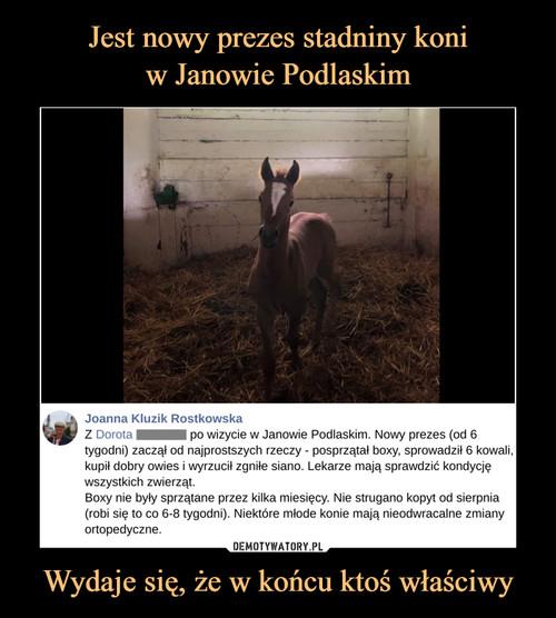 Jest nowy prezes stadniny koni w Janowie Podlaskim Wydaje się, że w końcu ktoś właściwy