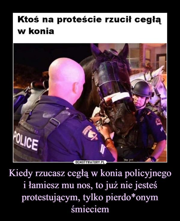 Kiedy rzucasz cegłą w konia policyjnego i łamiesz mu nos, to już nie jesteś protestującym, tylko pierdo*onym śmieciem –  Ktoś na proteście rzucił cegłąw konia