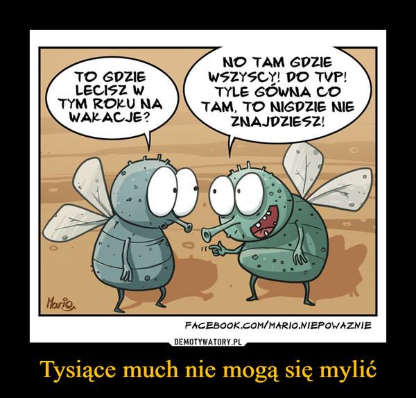Tysiące much nie mogą się mylić –