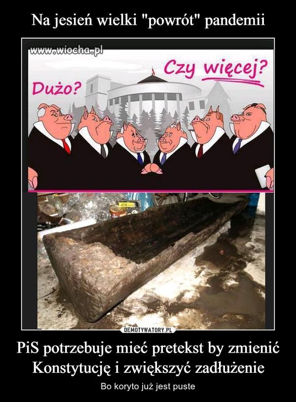 PiS potrzebuje mieć pretekst by zmienić Konstytucję i zwiększyć zadłużenie – Bo koryto już jest puste