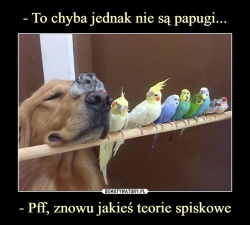 - To chyba jednak nie są papugi... - Pff, znowu jakieś teorie spiskowe
