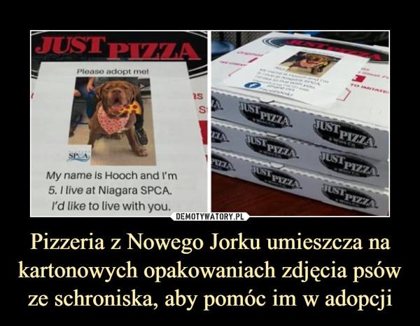 Pizzeria z Nowego Jorku umieszcza na kartonowych opakowaniach zdjęcia psów ze schroniska, aby pomóc im w adopcji –