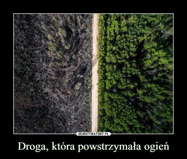 Droga, która powstrzymała ogień –