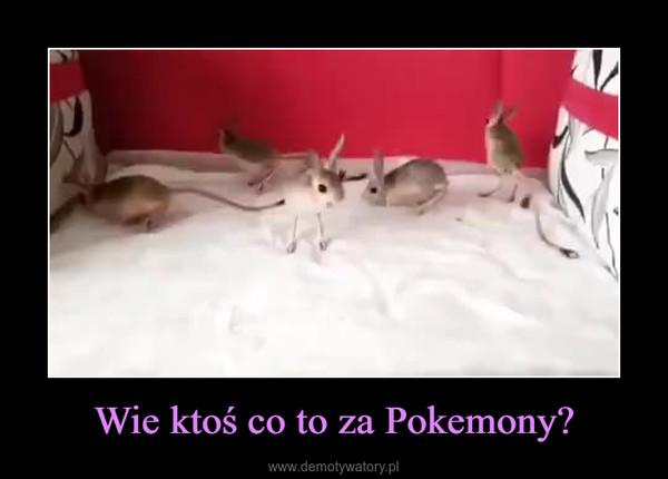 Wie ktoś co to za Pokemony? –