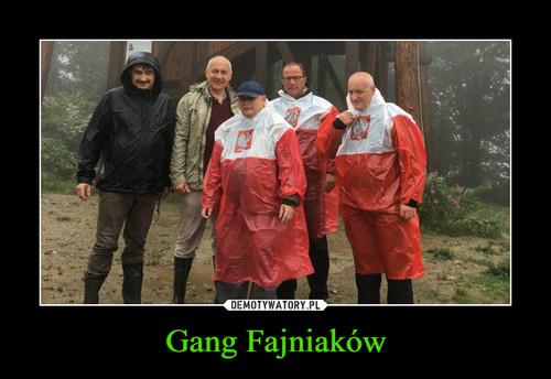 Gang Fajniaków