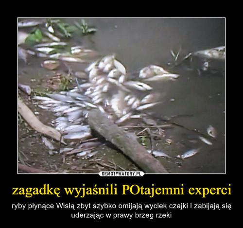 zagadkę wyjaśnili POtajemni experci