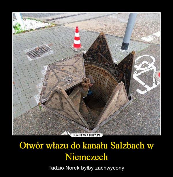 Otwór włazu do kanału Salzbach w Niemczech – Tadzio Norek byłby zachwycony