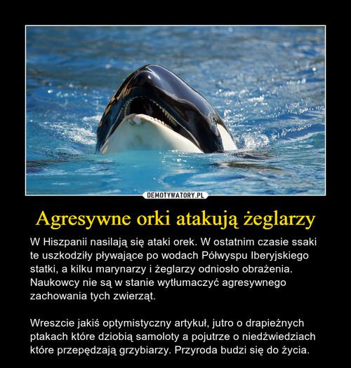 Agresywne orki atakują żeglarzy