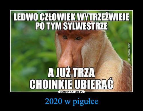 2020 w pigułce