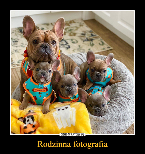 Rodzinna fotografia –